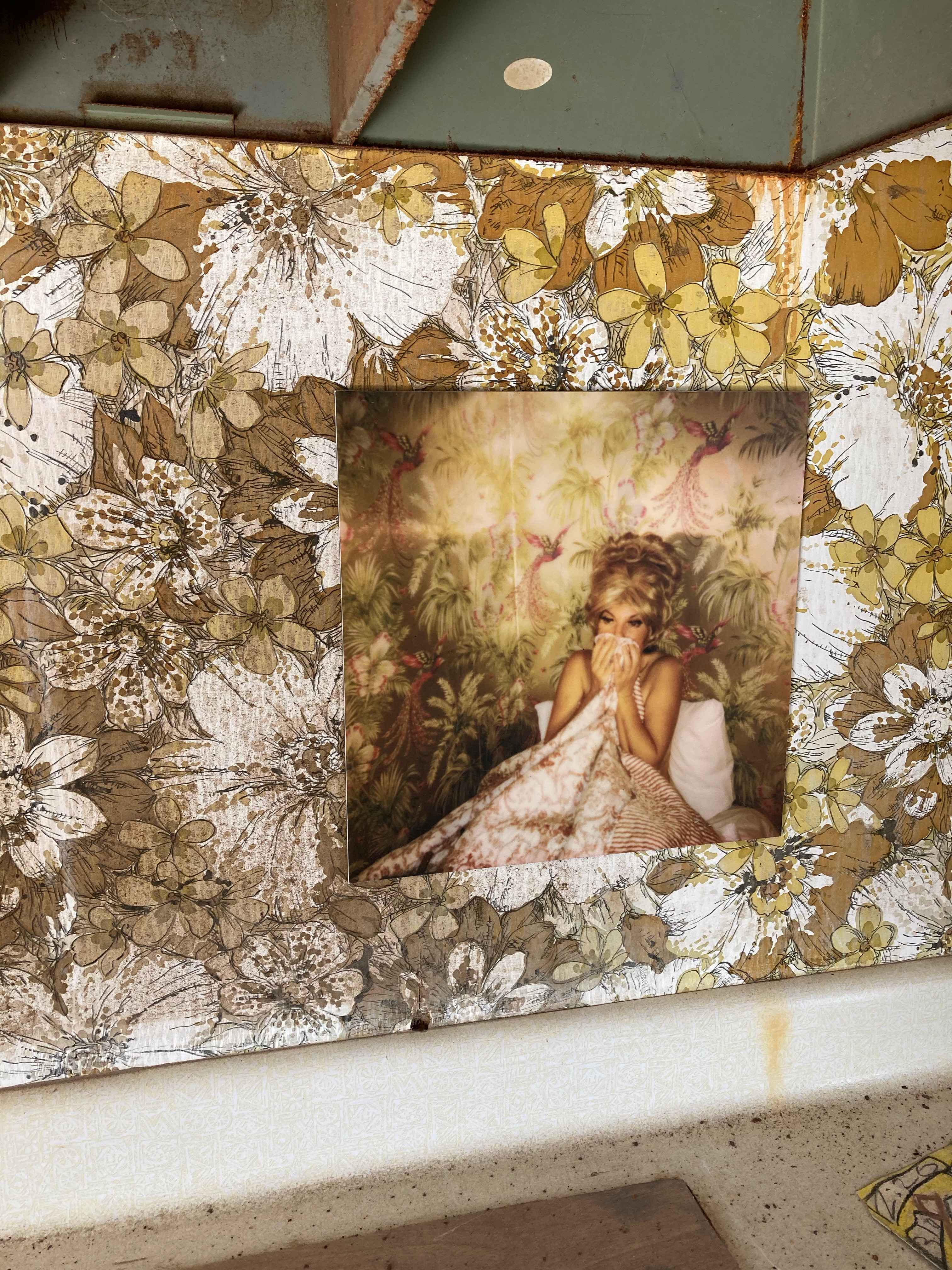 photograph of a woman in bed hanging on floral wallpaper