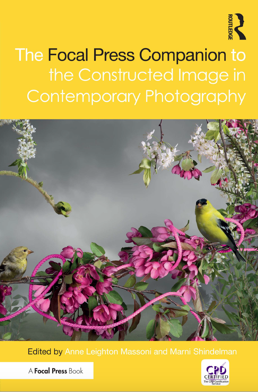 Contstructed Image cover